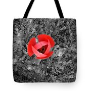 Red Tulip From Above Tote Bag