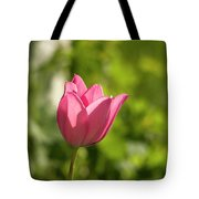 Red Tulip Head Tote Bag