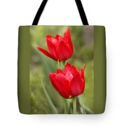 Red Tulips In A Meadow Closeup Sunny Spring Day Tote Bag