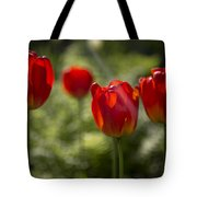 Red Tulips In Light Tote Bag