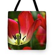 Red Tulips Petals Tote Bag