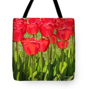 Red Tulips Square Tote Bag