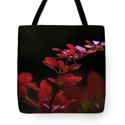Red Twilight Tote Bag