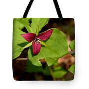 Red Upright Trillium Tote Bag