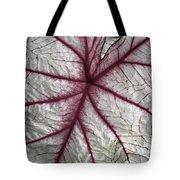 Red Veined Leaf Tote Bag