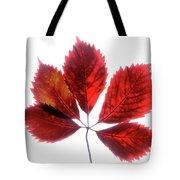 Red Vine Leaf Tote Bag