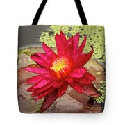 Red Water Lily Tote Bag