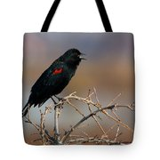 Red Winged Blackbird Call Tote Bag