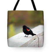 Red Winged Blackbird Tote Bag
