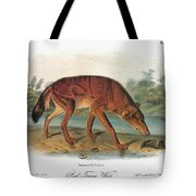 Red Wolf (canis Lupus) Tote Bag