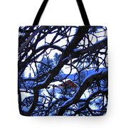 Red Woodshed Tote Bag