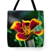 Red/yellow Side View 4-24-16 Tote Bag