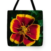 Red/yellow Flower 4-24-16 Tote Bag