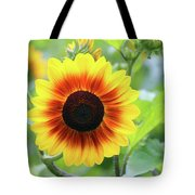 Red Yellow Sunflower Tote Bag
