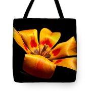 Red-yellow Tulip 1 Tote Bag