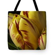 Red Yellow Tulip Tote Bag