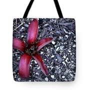 Red Zen Tote Bag
