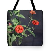 Red Zinnia Flowers Tote Bag