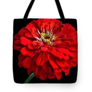 Red Zinnia Tote Bag