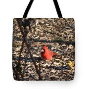 Redbird And American Golden Finch Tote Bag