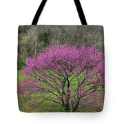 Redbud And Field In Jefferson County Tote Bag