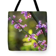 Redbud Bloom  Tote Bag