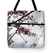 Redbuds In The Mist Tote Bag