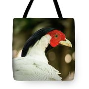 Redheaded Bird Portrait. Tote Bag