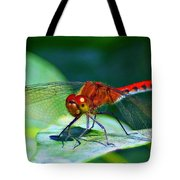 Redheaded Dragonfly Tote Bag