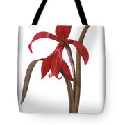 Redout�: St. James Lily Tote Bag