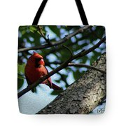 Red's Ray Of Light Tote Bag