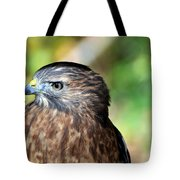 Redtail Tote Bag by Marty Koch