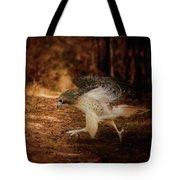 Redtail Morning Run Hawk Art Tote Bag