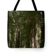 Redwood Highway Tote Bag