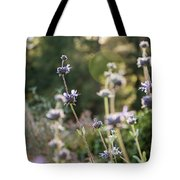 Redwood Meadow Light 2 Tote Bag