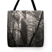 Redwood Mystery Tote Bag