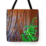 Redwood Tree Trunk At Pilgrim Place In Claremont-california   Tote Bag