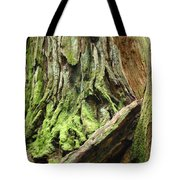 Redwood Trees Art Prints Baslee Troutman Tote Bag