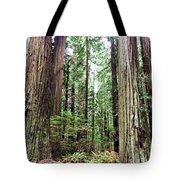 Redwood5 Tote Bag