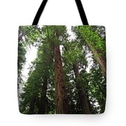 Redwood6 Tote Bag