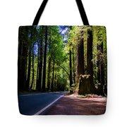 Redwoods Road Tote Bag