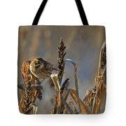 Reed Bunting Tote Bag