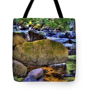 Reeder Creek From Under The Bridge Tote Bag