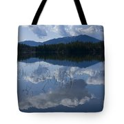 Reeds And Reflection Tote Bag
