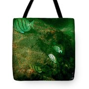 Reef Life Off Hawaii Tote Bag