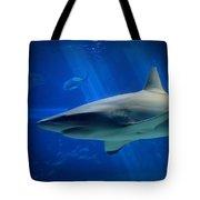 Reef Shark Tote Bag