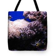 Reef Tank Tote Bag