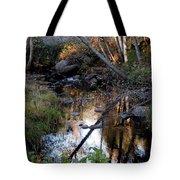 Reflect Upon Autumn Tote Bag