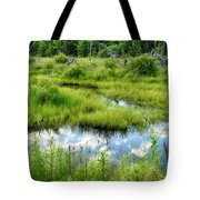 Reflected Clouds In Grass Tote Bag