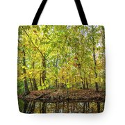 Reflected Color Of Autumn Tote Bag